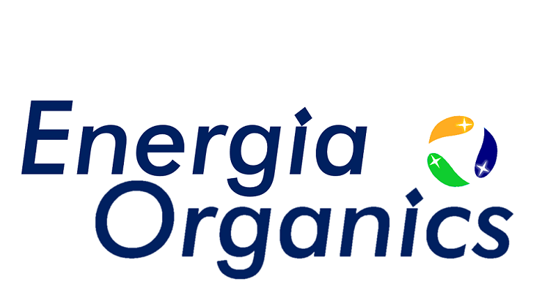 1 WEBSITE LOGO  WORLD